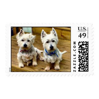 Punto y polar sello postal