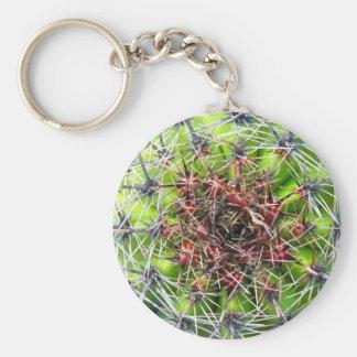 Puntos, espinas y agujas planta, cierre encima de  llavero redondo tipo pin