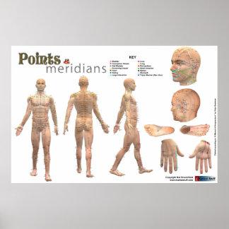 Puntos y meridianos del cuerpo - anotado impresiones