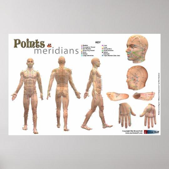 Puntos y meridianos del cuerpo - anotado póster