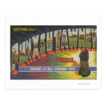 Punxsutawney, Pennsylvania (Groundhog) Post Cards
