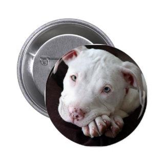 Pup 2 Inch Round Button