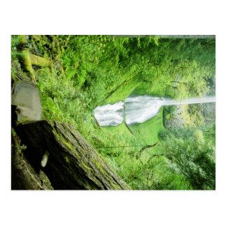 Pup Creek Falls Post Cards