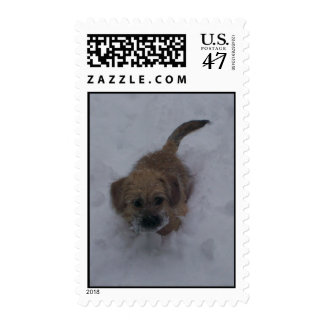 Pup in the Snow Postage