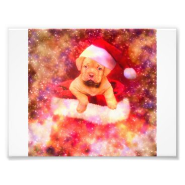 Art Themed PUPPIE LABRADOR CHRISTMAS PHOTO PRINT
