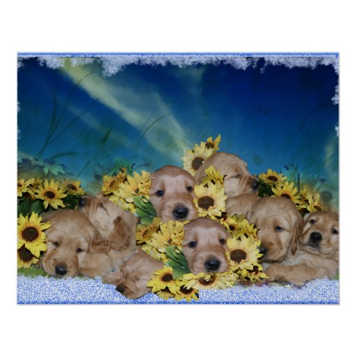 PUPPIES AND FLOWERS (GOLDEN RETRIEVER PILE) PRINT