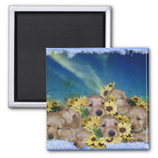 PUPPIES AND FLOWERS (GOLDEN RETRIEVERS) MAGNET