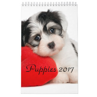 Puppies Calendar 2017