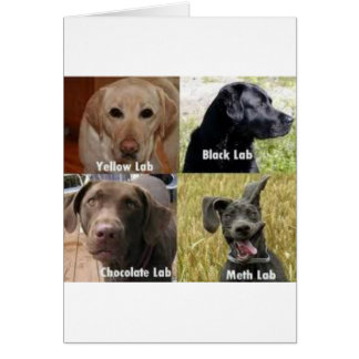 Puppies!!!! Greeting Card