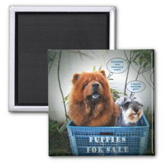 Puppies For Sale Fridge Magnet