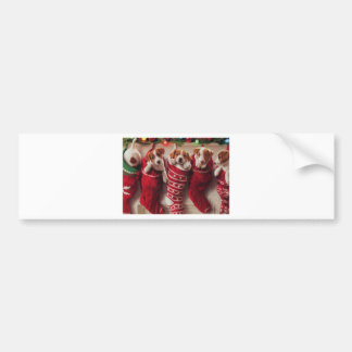 Puppies In Christmas Stockings Bumper Sticker