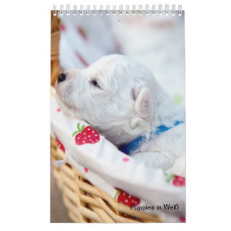 Puppies in Weis Calendar