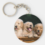 puppies key chains