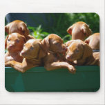 Puppies Mouse Pads