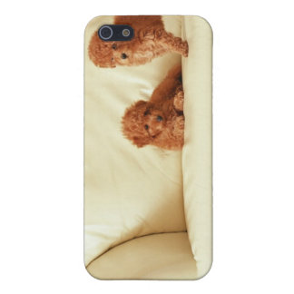 Puppies On The Sofa Case For iPhone SE/5/5s