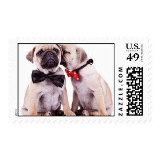 Puppies Postage