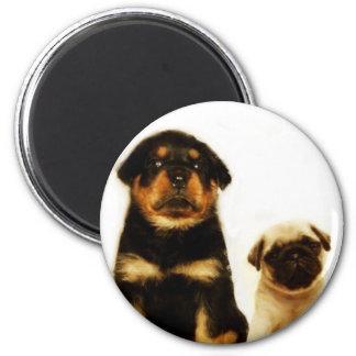 puppies round magnet