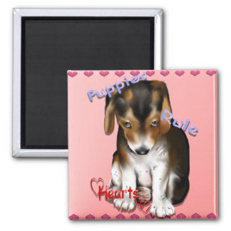 Puppies Rule Hearts Magnet