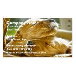 Puppies Sleeping Business Card Templates