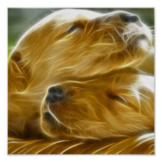 Puppies Sleeping Poster
