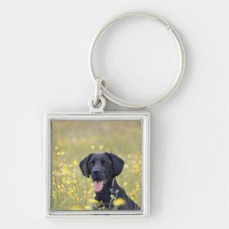 Puppy 16 Months 2 Keychain