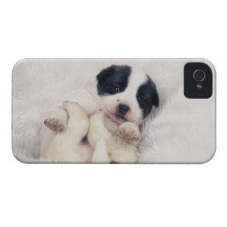 Puppy 2 Case-Mate iPhone 4 cases