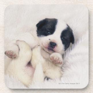 Puppy 2 drink coasters