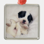 Puppy 2 ornaments