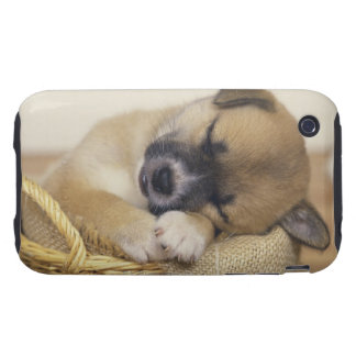 Puppy 3 tough iPhone 3 cases