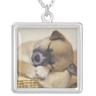 Puppy 3 personalized necklace