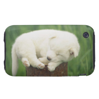Puppy 4 tough iPhone 3 cases