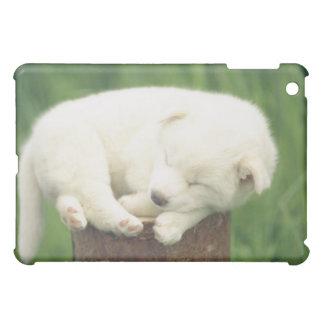Puppy 4 iPad mini case
