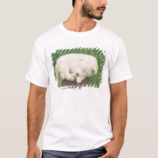 Puppy 4 T-Shirt