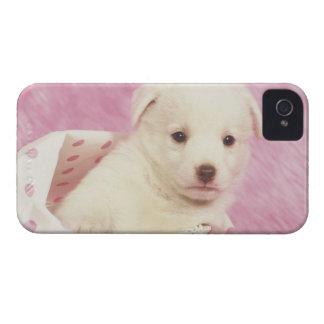 Puppy 5 Case-Mate iPhone 4 case