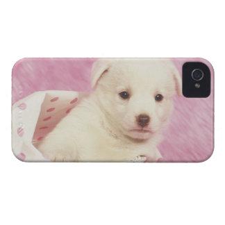 Puppy 5 iPhone 4 Case-Mate case