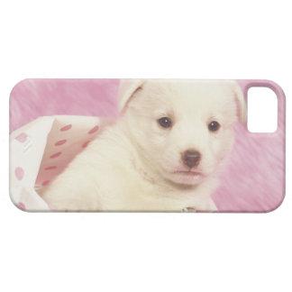 Puppy 5 iPhone SE/5/5s case