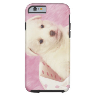 Puppy 5 tough iPhone 6 case