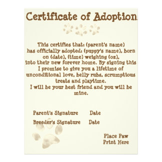 Puppy Adoption Certificate Letterhead