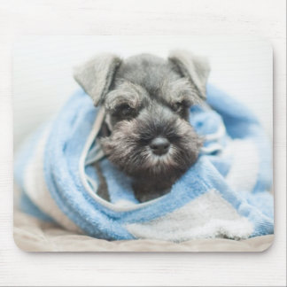 Puppy After Bath Mouse Pad