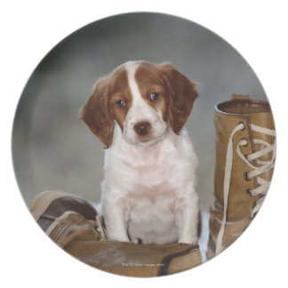 Puppy and Boots Dinner Plate