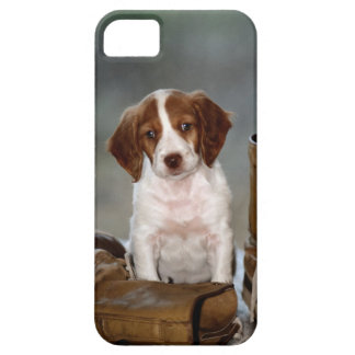 Puppy and Boots iPhone SE/5/5s Case