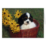 Puppy and Flowers in a Basket Card