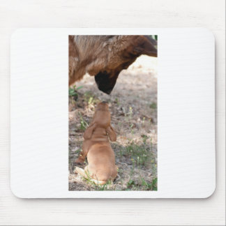 puppy and german sheperd mouse pad