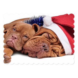 Puppy and its mom in Christmas decorations Card