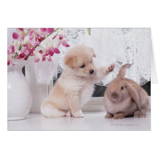 Puppy and Lop Ear Rabbit Greeting Cards