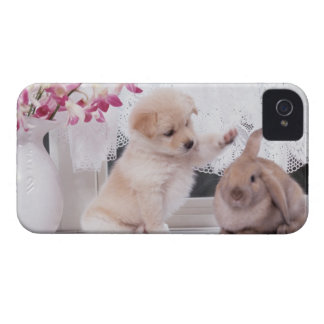 Puppy and Lop Ear Rabbit iPhone 4 Case-Mate Cases