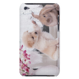 Puppy and Lop Ear Rabbit iPod Case-Mate Cases