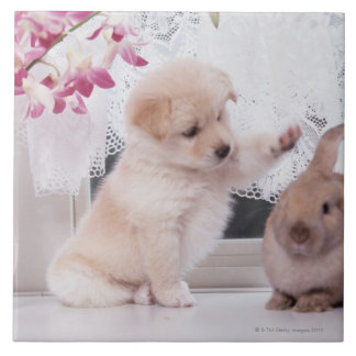 Puppy and Lop Ear Rabbit Ceramic Tile