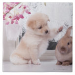 Puppy and Lop Ear Rabbit Large Square Tile