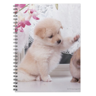 Puppy and Lop Ear Rabbit Notebooks